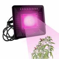 PROFI LED REFLEKTOR pre všetky rastliny, ružová, 50W, 220 V