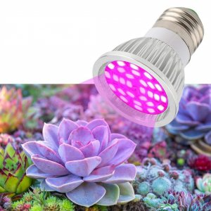 6 W -  PROFI LED GROW žiarovka pre všetky rastliny, E27, High-power+, ružová