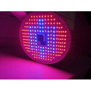 12 W - BASIC LED GROW žiarovka pre všetky rastliny s ovládačom na stmievanie a načasovanie, E27, SMD 2835, ružovo-modrá