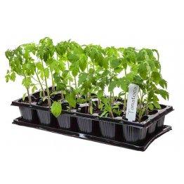 Vykurovacie podložky pre rastliny a teráriá