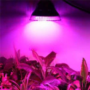 20 W - PROFI LED GROW žiarovka pre všetky rastliny 20W, E27, High-power+ ružová
