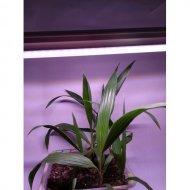 LED GROW trubica pre kaktusy a sukulenty, 18W, 120 cm, plné spektrum ružovo-fialová