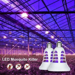 8 W - BASIC LED GROW žiarovka pre všetky rastliny s lapačom hmyzu, E27, fialová