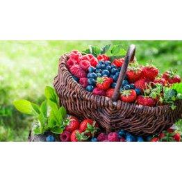 Ovocné kríky a stromy