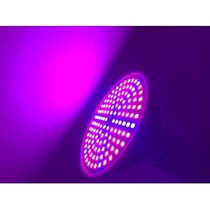 6 W - BASIC LED GROW žiarovka pre všetky rastliny, E27, SMD 2835, fialová